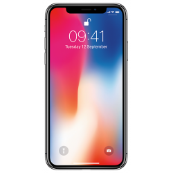 Apple iPhone X 64GB серый космос